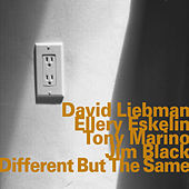 Different but the Same by Ellery Eskelin