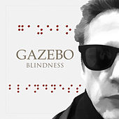 Blindness by Gazebo