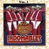 24 Kilates de Exitos, Vol. 1 by Los Indomables De Cedral