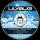 Driven Snow by Dale Hooks