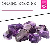 Qi Gong Exercise by Various Artists
