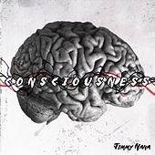 Consciousness by Jimmy NaNa