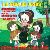 La Vida de Jesús by Manuel Bernal