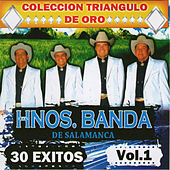 30 Exitos, Vol. 1 by Los Hermanos Banda De Salamanca