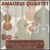 Quartetto per archi in re minore D. 810