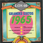 Grandes Exitos 1965 by Various Artists