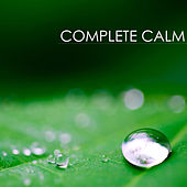 Complete Calm: Extremely Calming & Relaxing Piano Music for Relaxation Meditation and Stress Relief by Calm Music Ensemble