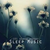 Deep Sleep Music - 101 Sleep Songs for Sleeping, Sounds of Nature to Relax & Falling Asleep at Night by Sleep Music Academy
