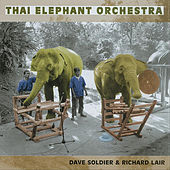 Thai Elephant Orchestra by Dave Soldier