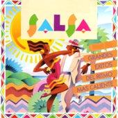 Salsa, Grandes Exitos del Ritmo Mas Caliente by Various Artists