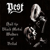 Hail The Black Metal Wolves Of Belial by Pest
