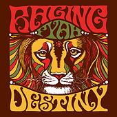 Destiny by Raging Fyah