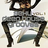 Sexy Deep House Grooves, Vol. 1 (Attractive & Sensual House Collection) by Various Artists