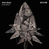 Stone Flower by Adam Beyer