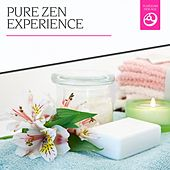 Pure Zen Experience by Various Artists
