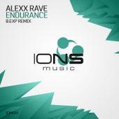 Endurance (B.Exp Remix) by Alexx Rave