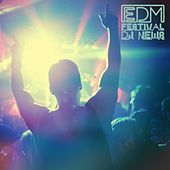 EDM Festival DJ News by Various Artists
