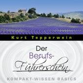 Der Berufs-Führerschein - Kompakt-Wissen Basics by Kurt Tepperwein
