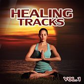 Healing Tracks, Vol. 1 by Various Artists