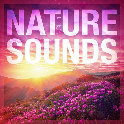 Nature Sounds, Vol. 1 by Nature Sounds for Sleep and Relaxation