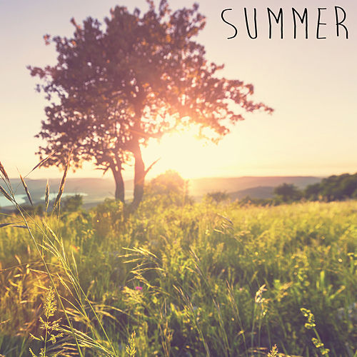 Summer by Deep Sleep Relaxation