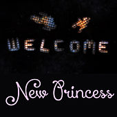Welcome New Princess by Various Artists