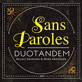 Sans Paroles by Mark Anderson