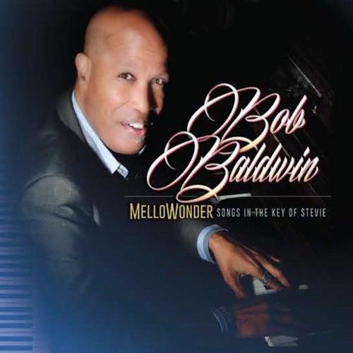 Mellowonder/Songs in the Key of Stevie by Bob Baldwin