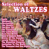 Selection Of Waltzes by Various Artists
