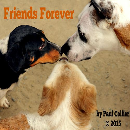 Friends Forever by Paul Collier