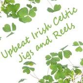Upbeat Irish Celtic Jigs and Reels by Irish Celtic Music
