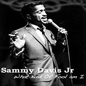 What Kind Of Fool Am I by Sammy Davis, Jr.