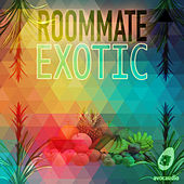 Exotic by Roommate