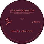 Reign (Shit Robot Remix) by Prinzhorn Dance School