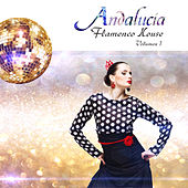 Andalucía Flamenco House, Vol. 1 by Various Artists