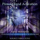Pineal Activation #1 by Source Vibrations