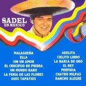 Sadel En Mexico by Alfredo Sadel