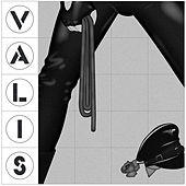 The Demolished Man by Valis