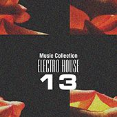 Music Collection. Electro House 13 by Various Artists