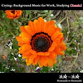 Crying: Background Music for Work, Studying (Remix) by Hamasaki