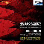 Mussorgsky: Pictures at an Exhibition, Suite, A Night on the Bare Mountain, Borodin: Polovtsian Dances, In the Steppes of Central Asia by Arnhem Philharmonic Orchestra