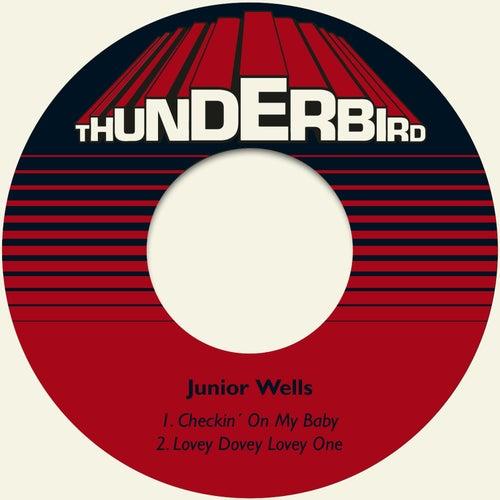 Checkin´ on My Baby von Junior Wells