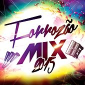 Forrozão Mix 2015 by Various Artists