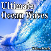 Ultimate Ocean Waves (Nature Sounds) by Nature Soundscape