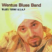 Blues Today U.S.A. by Wentus Blues Band