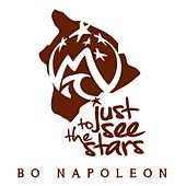 Just to See the Stars by Bo Napoleon