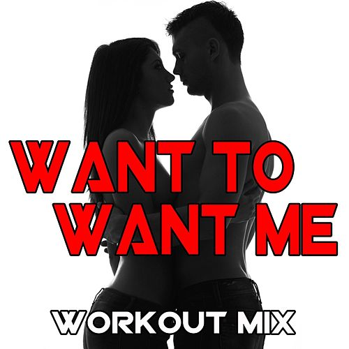 Want to Want Me (Workout Mix) by DJ Dmx