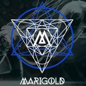 Marigold by Marigold