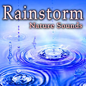 Rainstorm (Nature Sounds) by Nature Soundscape