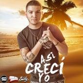 Asi Creci Yo (Yo No Creci En El Bronx) by Smoky